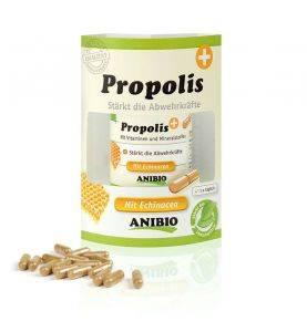 https://sw5502.smartweb-static.com/upload_dir/shop/Anibio_Propolis_DollarDog.jpg